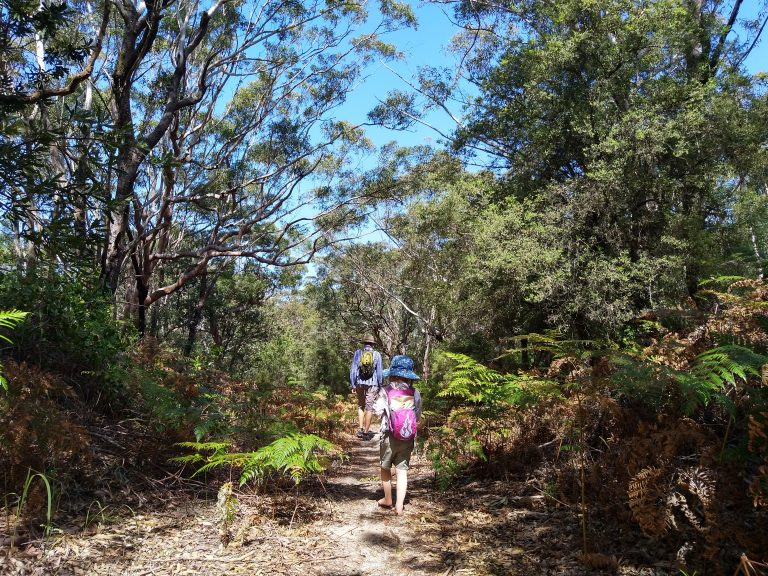 Tomaree-Coastal-Adventures-Nature-Play-2
