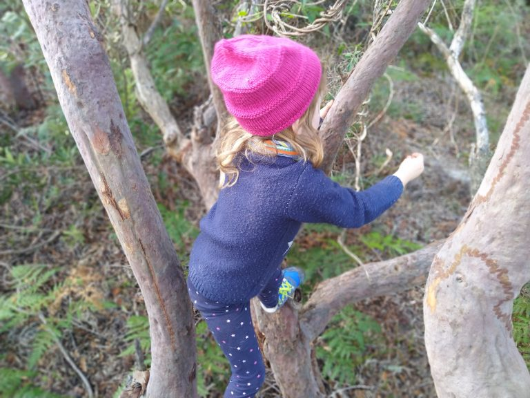 Looking down at a child climbing a tree